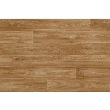 Havanna Oak 602M