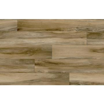 English Walnut 619D